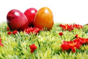 Ostern, Ostereier auf Wieser